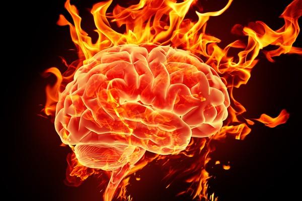 Khoa học hiện nay mới chỉ hiểu được 10% bộ não người