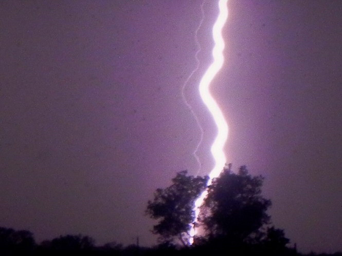 lightning_lightning_bolt_tree.800w_600h