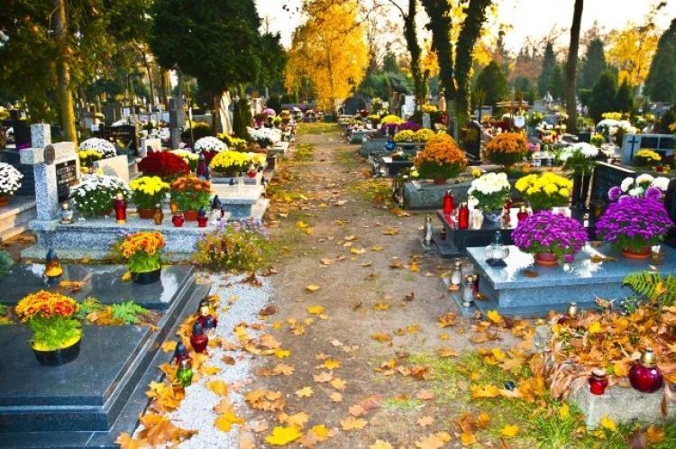 Người Talca trang hoàng nghĩa địa để đón