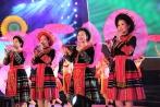 Tuần lễ Đại đoàn kết các dân tộc-Di sản văn hóa Việt Nam