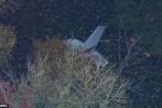Trực thăng đâm máy bay dân sự, một phi công Việt tử nạn