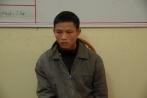2 ngày trộm 9 con trâu của người cùng huyện mang đi bán
