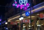 Đường phố Hà Nội đẹp giản dị mừng năm mới 2017