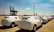 Lô Volkswagen Tiguan Allspace cập cảng nhưng chưa thể đến tay khách hàng