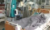 Bệnh nhân ngộ độc nấm có thể phải ghép gan