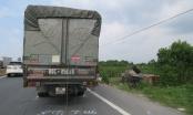 Hải Phòng: Va chạm với xe tải, chiếc container phơi bụng dưới ruộng