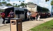 Video: VTV khẳng định xe khách Thành Bưởi chạy trá hình, trốn thuế