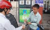 Chính phủ yêu cầu đẩy mạnh phân phối, tiêu thụ xăng sinh học