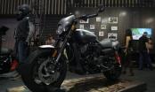Harley-Davidson ra mắt 2 mẫu xe mới tại Việt Nam