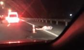 Ra khỏi xe sau tai nạn, một phụ nữ bị tông tử vong