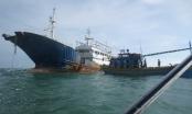 """Bán đấu giá """"con tàu ma""""  trôi tự do vào biển Bình Thuận"""
