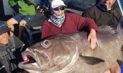 """Lão bà 68 tuổi quăng cần câu được cá """"quái vật"""" dài 1,6m"""