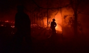 Toàn cảnh 2.000 người chống chọi với cháy rừng Sóc Sơn lớn kỷ lục