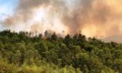 Nhiều ha rừng bị bốc cháy ở Thanh Hóa
