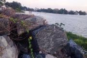 Kiến nghị dừng hẳn dự án lấn sông Đồng Nai
