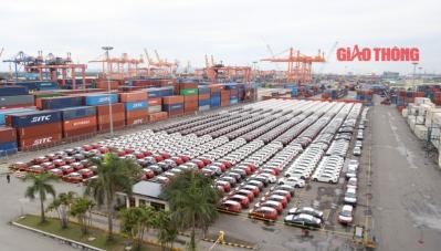 Nhiều doanh nghiệp tăng tốc nhập khẩu xe về Việt Nam