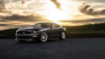 """Ngỡ ngàng bộ sưu tập """"ngựa hoang cơ bắp"""" Ford Mustang"""