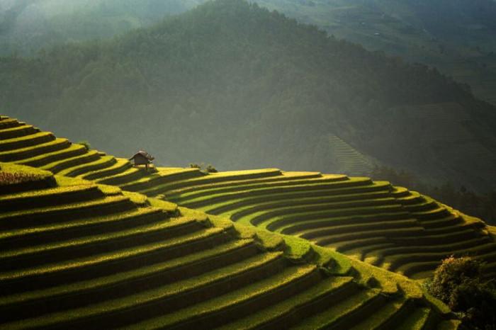 Mê đắm trước những bức ảnh nông thôn của 3 nước Thái Lan, Myanmar và Việt Nam 7