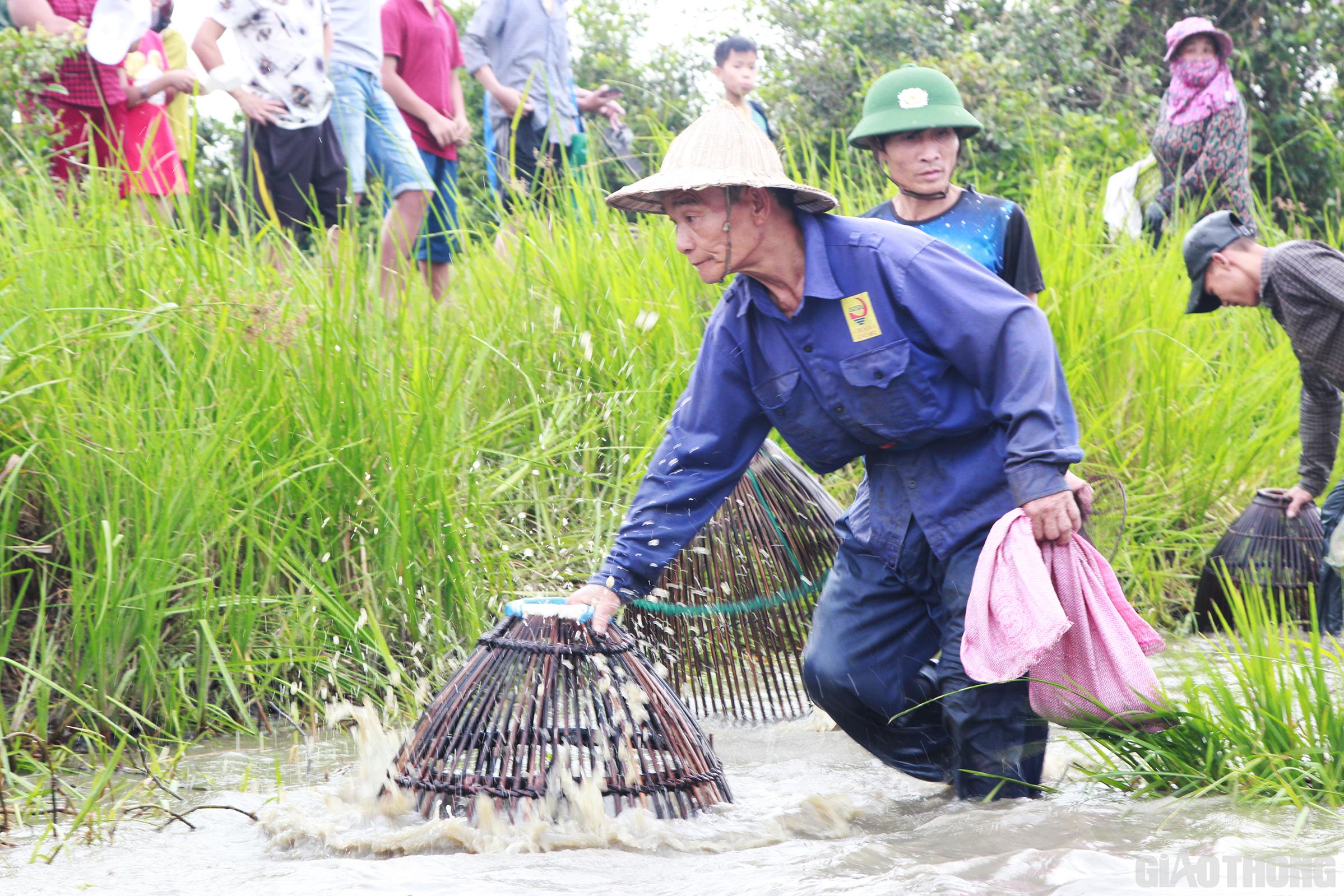 Rất nhiều người già đã lớn tuổi nhưng cũng mang theo nơm xuống đầm thể hiện kinh nghiệm trong việc bắt cá của bản thân mình