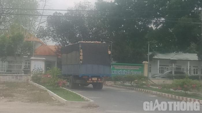 Bất thường đấu giá cao su ở Kon Tum: Rầm rộ khai thác, vô tư chở quá tải 5